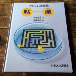2012年12月「かしこい単細胞 粘菌」