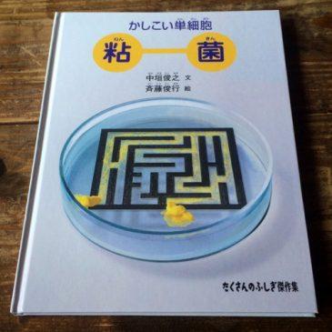 「かしこい単細胞 粘菌」発売になりました